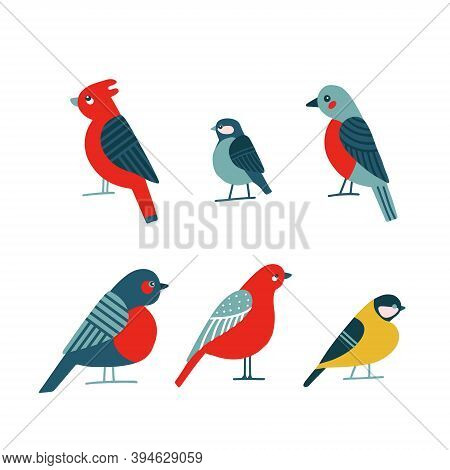 Birdwatching Icon Set. Red Northern Cardinal, Robin Chickadee Bird Pose. Abstract Flat Cartoon Flat