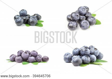 Set Of Bilberry Isolated On A White Background Cutout