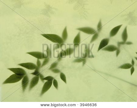 Leaves And Fern Paper