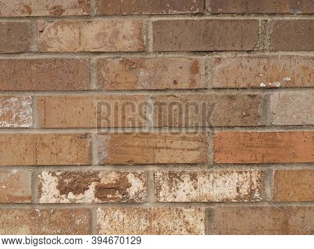 A Brick Wall That Has A Good Texture In A Garden Landscape.