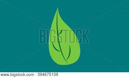 Basil Leaf Of Green Color On A Green Background, Vector Illustration. Basil To Add To Food, Pizza, V