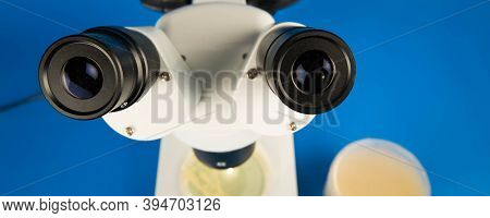 Scientific microscope and petri dishes for scientific research . High quality image