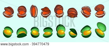 Seafood Mussel, Ocean Delicacy Food. Cartoon Icon Design Template With Various Models. Modern Vector
