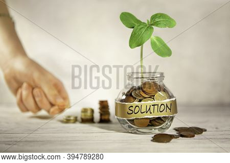 Solution. Glass Jar With Coins And A Plant, In The Background A Female Hand Puts Coins Near A Glass
