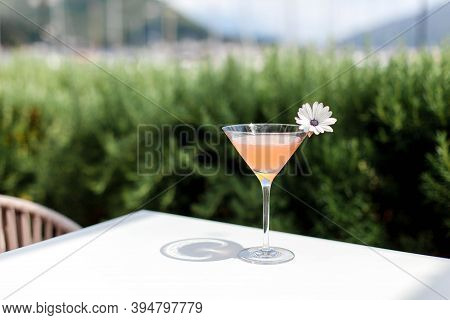 Summer Cocktail Garnished With Flowers. Cold Alcohol Beverage On Bar Terrace Outdoor.