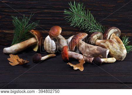 Mushrooms On A Wooden Table. White Mushrooms. Cep Mushrooms. Boletus.