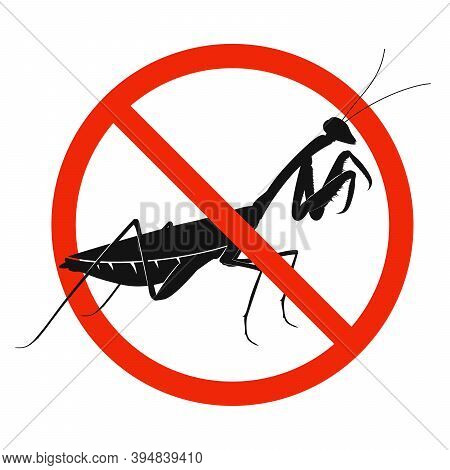 The Mantis With Red Ban Sign. Stop Mantis Sign Isolated. Forbid Mantis Icon. Vector Illustration.