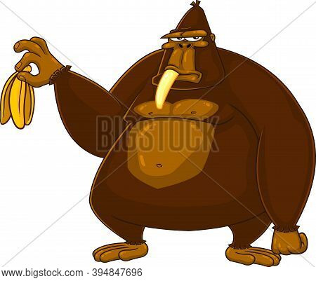 Grumpy Gorilla Cartoon Character Is Holding A Banana. Raster Illustration Isolated On White Backgrou