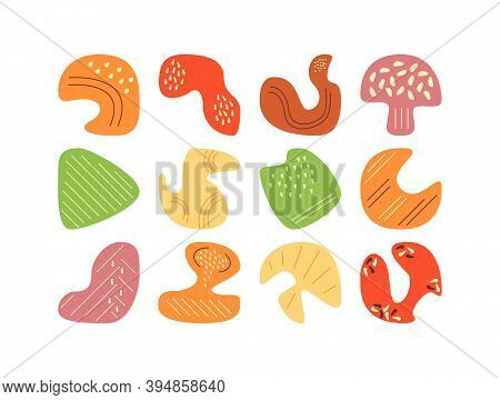 Picking Mushrooms In Autumn Forest Flat Vector Abstract Elements Set. Colorful Dried Mushrooms Rgb C