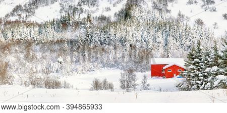 Astonishing Winter Scenery With Traditional Norwegian Wooden Houses And Pine Trees Near Valberg Vill