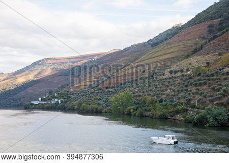 Autumn In Douro Valley, Portugal