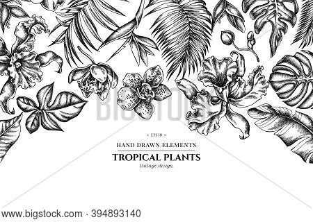 Floral Design With Black And White Monstera, Banana Palm Leaves, Strelitzia, Heliconia, Tropical Pal