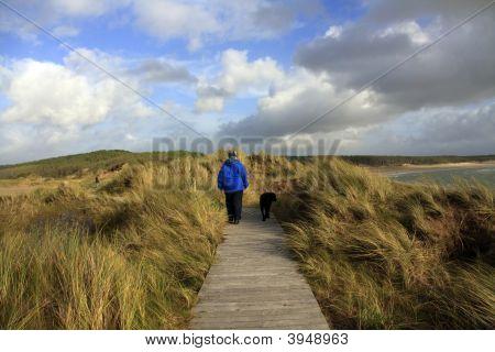 Ynys Llanddwyn an Island off Newborough Forest On the Isle of Anglesey Wales poster