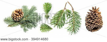 Creative Layout Of  Fir Tree Branches And Pine Cone Isolated On White Background. Pattern. Christmas