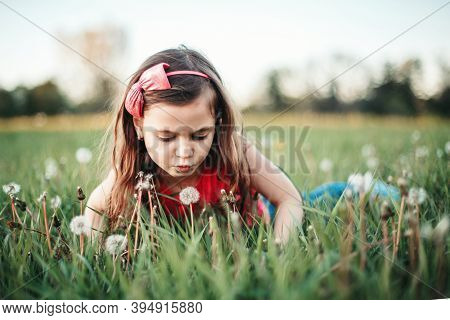 Cute Adorable Caucasian Girl Blowing Dandelions Flowers. Child Lying In Grass On Meadow. Outdoor Fun