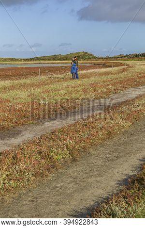 Texel, Netherlands - October 22, 2020: Bird Watching In Nature Reserve De Slufter On The Waddenislan