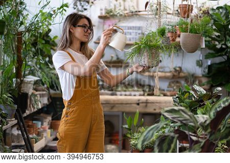 Woman Gardener In Orange Overalls Watering Potted Houseplant In Greenhouse Surrounded By Plants And