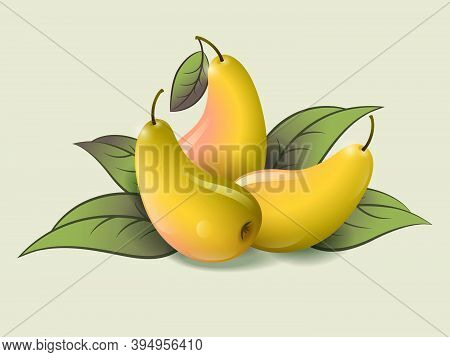 Three Ripe Pears On A Light Background. Ripe Fruits And Leaves Illustration. Organic Farm Products.