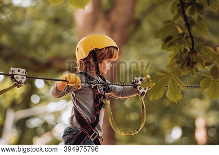 Happy Child Climbing In The Trees. Children Summer Activities. Early Childhood Development. Child. S