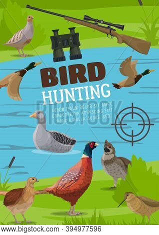 Water And Upland Birds Hunting Poster. Vector Pheasant And Grouse, Flying Wild Duck Or Mallard, Floa