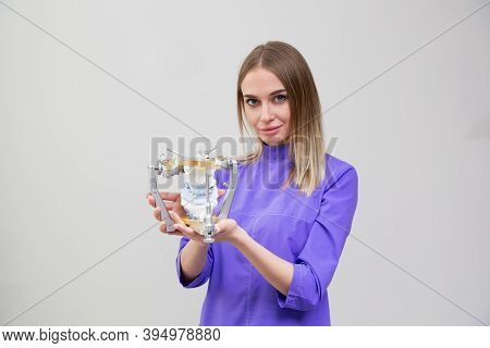 Dental Examinations Articulator Device, Orthodontist Holds In Hand
