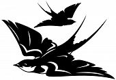 flying swallow bird vector illustration - black and white outline and silhouette poster