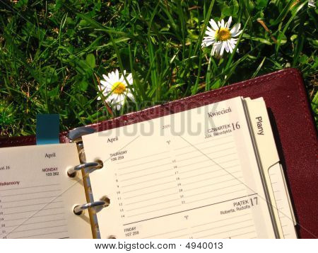 Notebook On The Grass