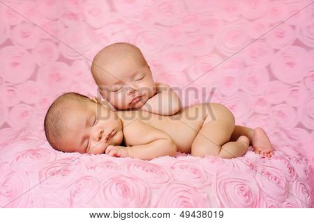 Fraternal Twin Newborn Baby Girls Sleeping On Pink Rose Fabric