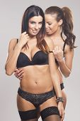 Beautiful sensual lesbian couple in lingerie on gray isolated background poster