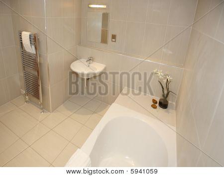 Modern Luxury Bathroon Interior