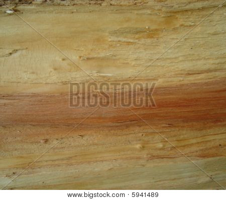 Wood Background LARGE