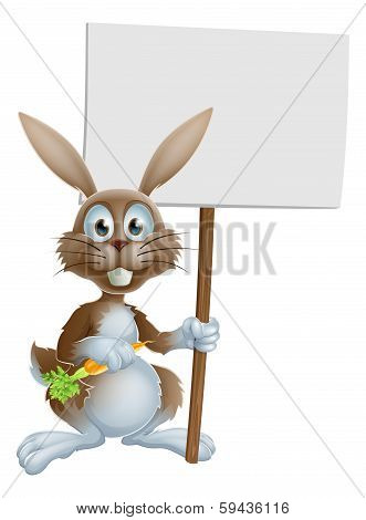 Cartoon Bunny Rabbit Carrot And Sign