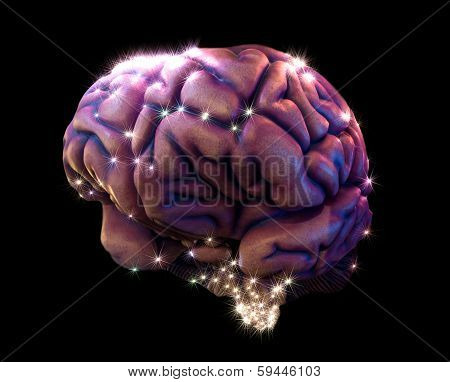 Brain Depiction