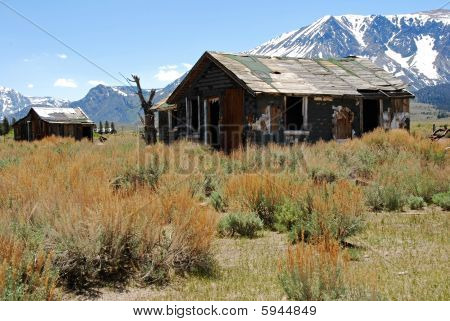 Abandoned Cabin