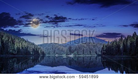 Pine Forest And Lake Near The Mountain Early At Night