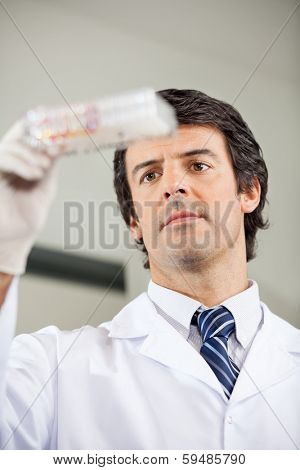 Mid adult male researcher analyzing microplate in laboratory