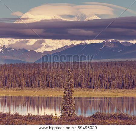McKinley peak poster