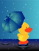 Raining outside, only the weather ducks would love... Duck with umbrella.. poster