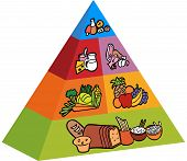 3d food pyramid items