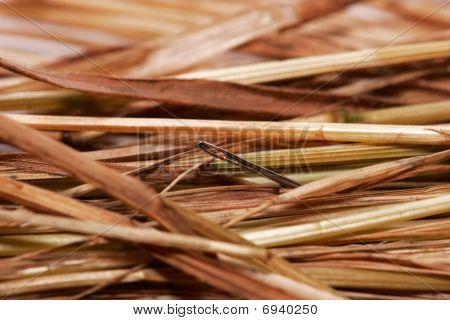 A Needle In A Haystack