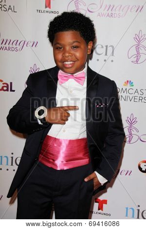 LOS ANGELES - AUG 1:  Benjamin Flores Jr at the Imagen Awards at the Beverly Hilton Hotel on August 1, 2014 in Los Angeles, CA