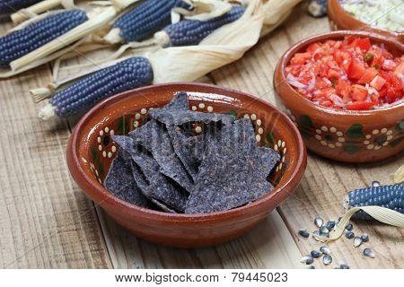 blue corn tortilla chips with salsa