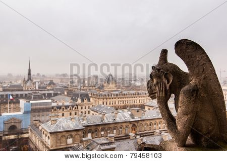 View of Paris in cloudy day from the top of Notre Dame Cathedral