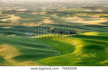 Silo In Beautiful Landscape Of Palouse