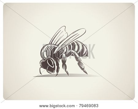 Schematic illustration Bee. Isolated object.