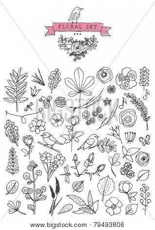 Vintage elements - floral - hand drawn style