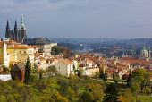 view of city from Petrinske orchards Prague Czech Republic poster