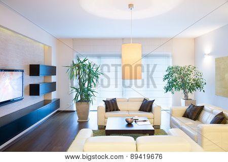 Stylish Modern Tv Room