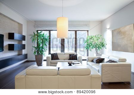 Bright Cozy Apartment