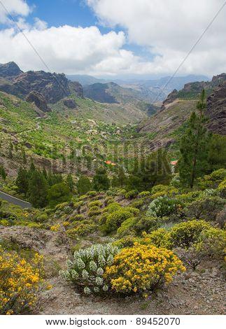 Gran Canaria, Las Cumbres - The Highest Areas Of The Island